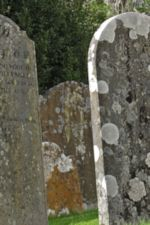 Photo of Gravestones with Lichen, by Harry Griswold