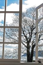 Photo of White Cottage Window, by Harry Griswold